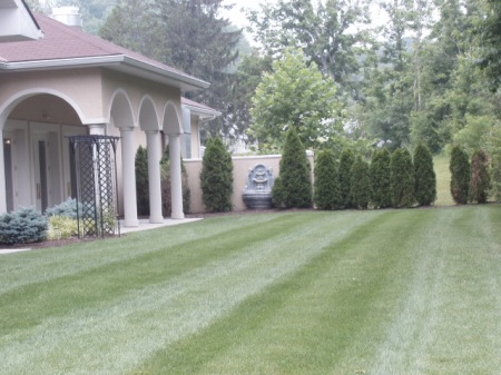 0609 - Wedding Plans - Lawn